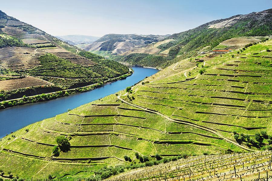 6 Graus nas vinhas do Douro
